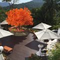Hotel Mousai's Orange Deck - Puerto Vallarta