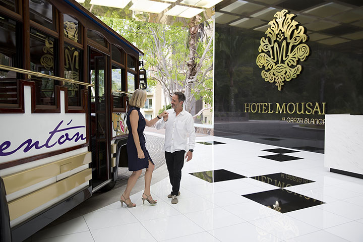 airport pick up hotel mousai puerto vallarta